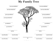 Family Tree with Many Siblings