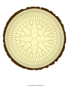 Radial Family Tree 8 Generation Stump