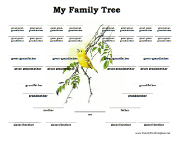 5 Generation Family Tree with Siblings Template