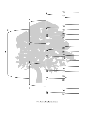 5 Generation Family Tree with Brackets - Vertical Template