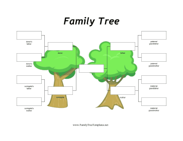Family Trees for Non-Traditional Families