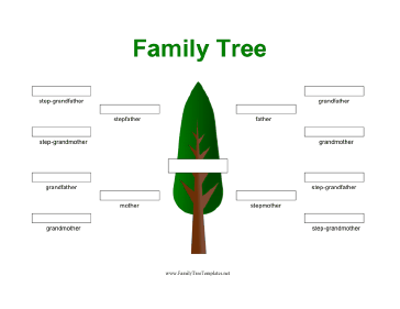 Stepfamily Family Tree Template