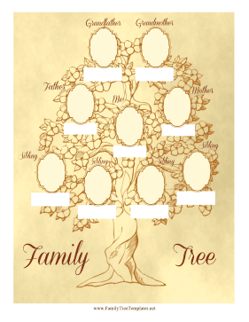 Vintage Family Tree 3 Generations Template
