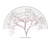 8-Generation Fan With Graphic family tree template