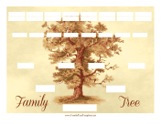 Vintage Family Tree 5 Generations family tree template